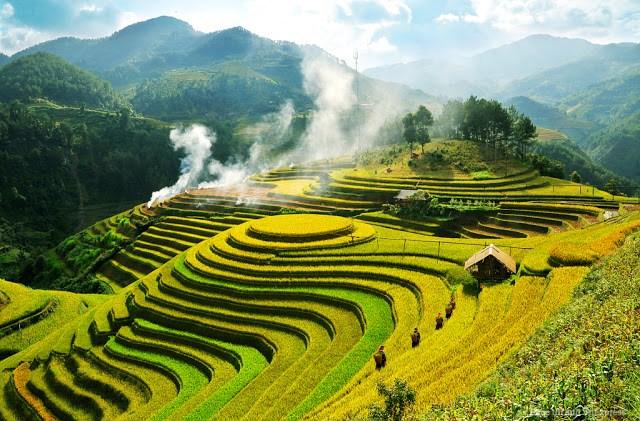 Phân tích bài thơ Việt Bắc của nhà thơ Tố Hữu cực hay